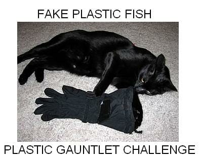 FAKE PLASTIC ROB- My week of saving my plastic garbage