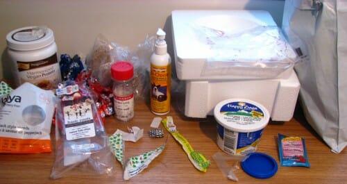 Plastic Challenge: Kristin Overton, Week 41
