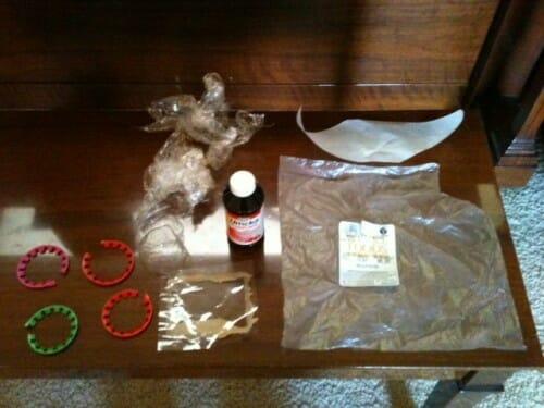 Plastic Challenge: Mary Katherine, Week 15