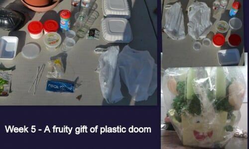 Plastic Challenge: Sandy, Week 5