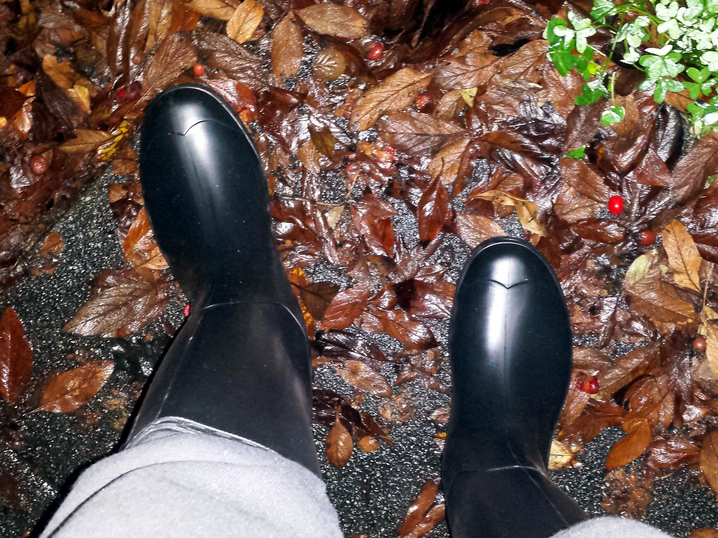 e4b305306903 Kamik Recycled and Recyclable Rain Boots » My Plastic-free Life