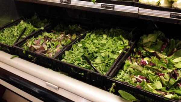 Loose-Lettuce20151025_153112