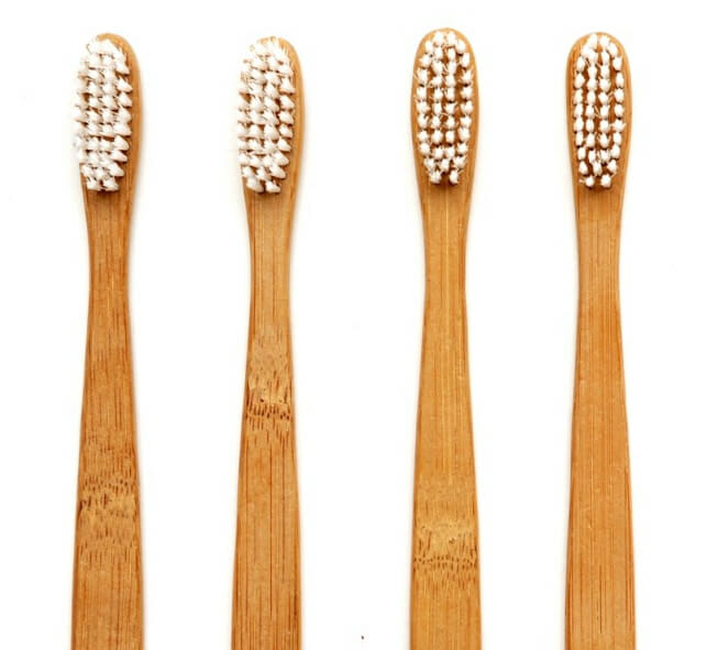 Image result for Compostable Toothbrush