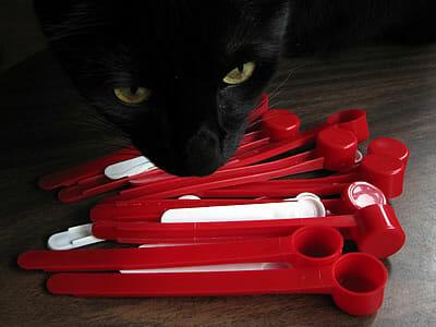 cat food supplement plastic scoops Balance IT