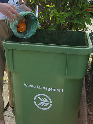 Garbage Without Plastic Trash Bags
